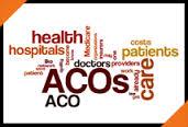 Healthcare ACO: Value vs. Cost