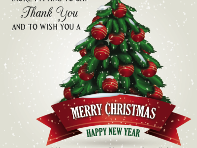 Medical Management Services-Merry Christmas